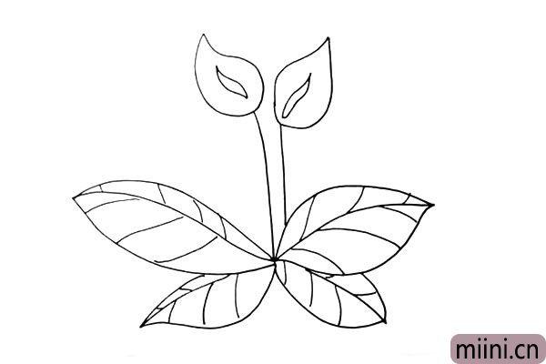 第七步:接着画出叶子上面的纹理。