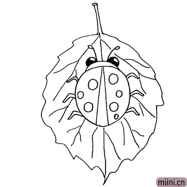 9.在把叶子的纹理勾勒出来.要仔细观察叶子的纹理。