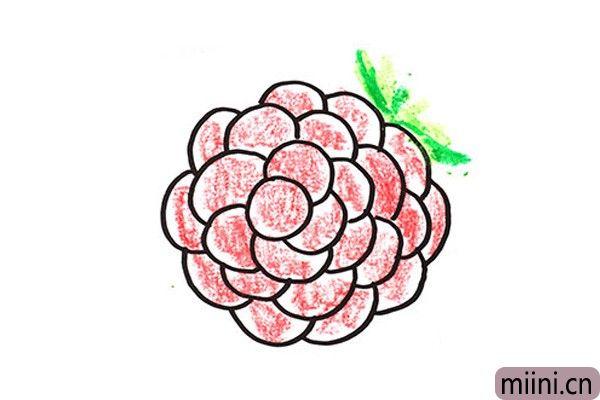 6.最后一步画上葡萄的叶子,然后用蜡笔给它涂上颜色。