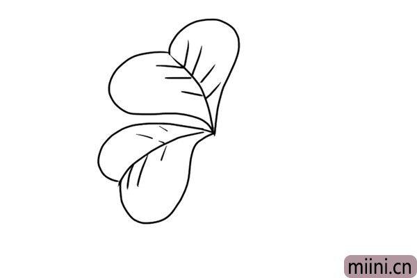3.按照上面的方法画第二片叶子。