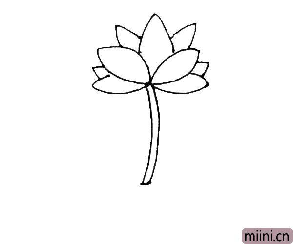 第四步:在花朵的下面,画上两根弧线,作为荷花的枝条。