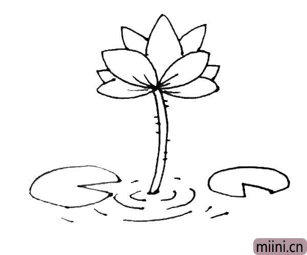 第六步:枝条旁边用弧线画出一些水波,以及在枝条和花瓣上加上一些纹理细节。