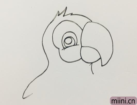 如何画鹦鹉简笔画步骤