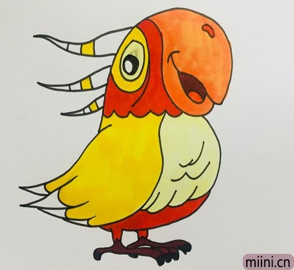 乖巧听话的鹦鹉简笔画步骤教程