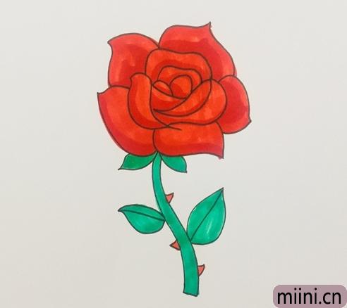 盛开的玫瑰花简笔画步骤教程