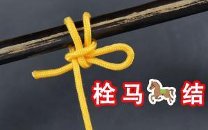 养马人教我的拴马绳结,做法简单能够快速解开,古代很多土匪使用