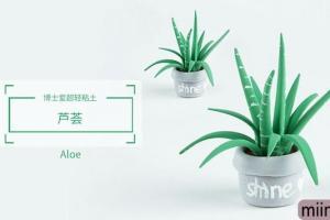 简单的超轻粘土芦荟盆栽的制作步骤教程