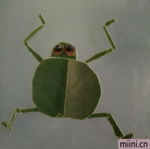 小青蛙01.jpg