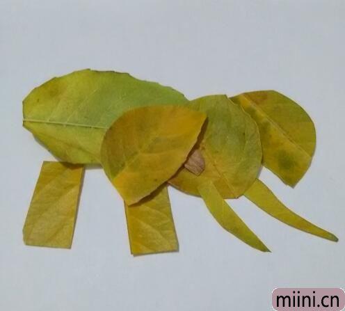 大象10.jpg