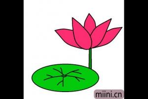水中盛开的莲花简笔画步骤教程