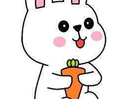 抱着胡萝卜的兔子的简笔画步骤教程