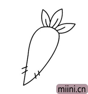 红萝卜04.png