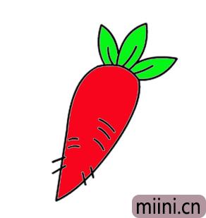 红萝卜06.png
