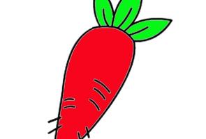 红色的大萝卜简笔画步骤教程