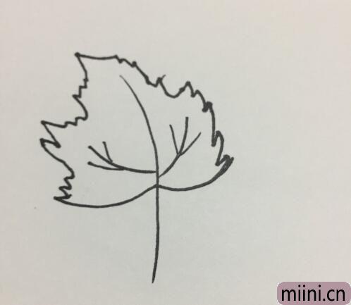 树叶的简笔画06.jpg