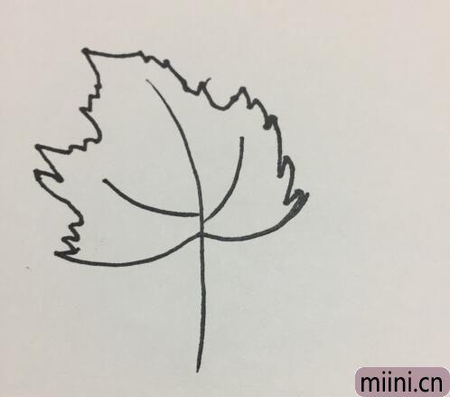 树叶的简笔画05.jpg