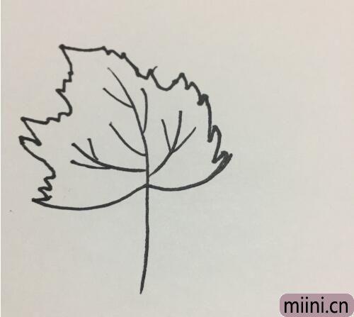 树叶的简笔画07.jpg