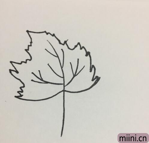 树叶的简笔画01.jpg