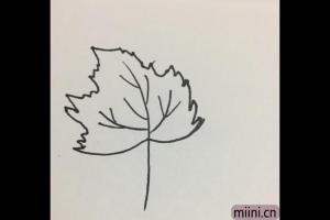 梧桐树的叶子简笔画步骤教程