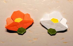 春天来了,折个椿,山茶花书签的折纸步骤教程