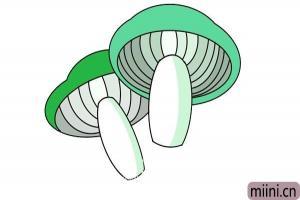 仰视角度的蘑菇简笔画步骤教程图解