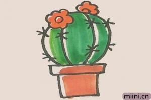 仙人球花的简笔画步骤教程图解