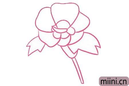 木槿花简笔画