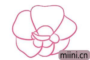 木槿花简笔<a href=http://www.miini.cn/hhds/ target=_blank class=infotextkey>画</a>
