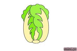 翠绿的大白菜简笔画步骤教程图解